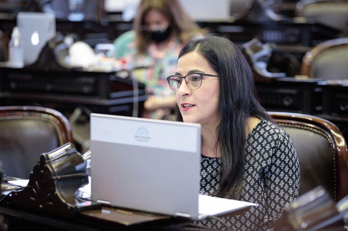 La diputada Moisés denunció la inacción oficial para buscar a mujeres desaparecidas y prevenir los femicidios en Jujuy